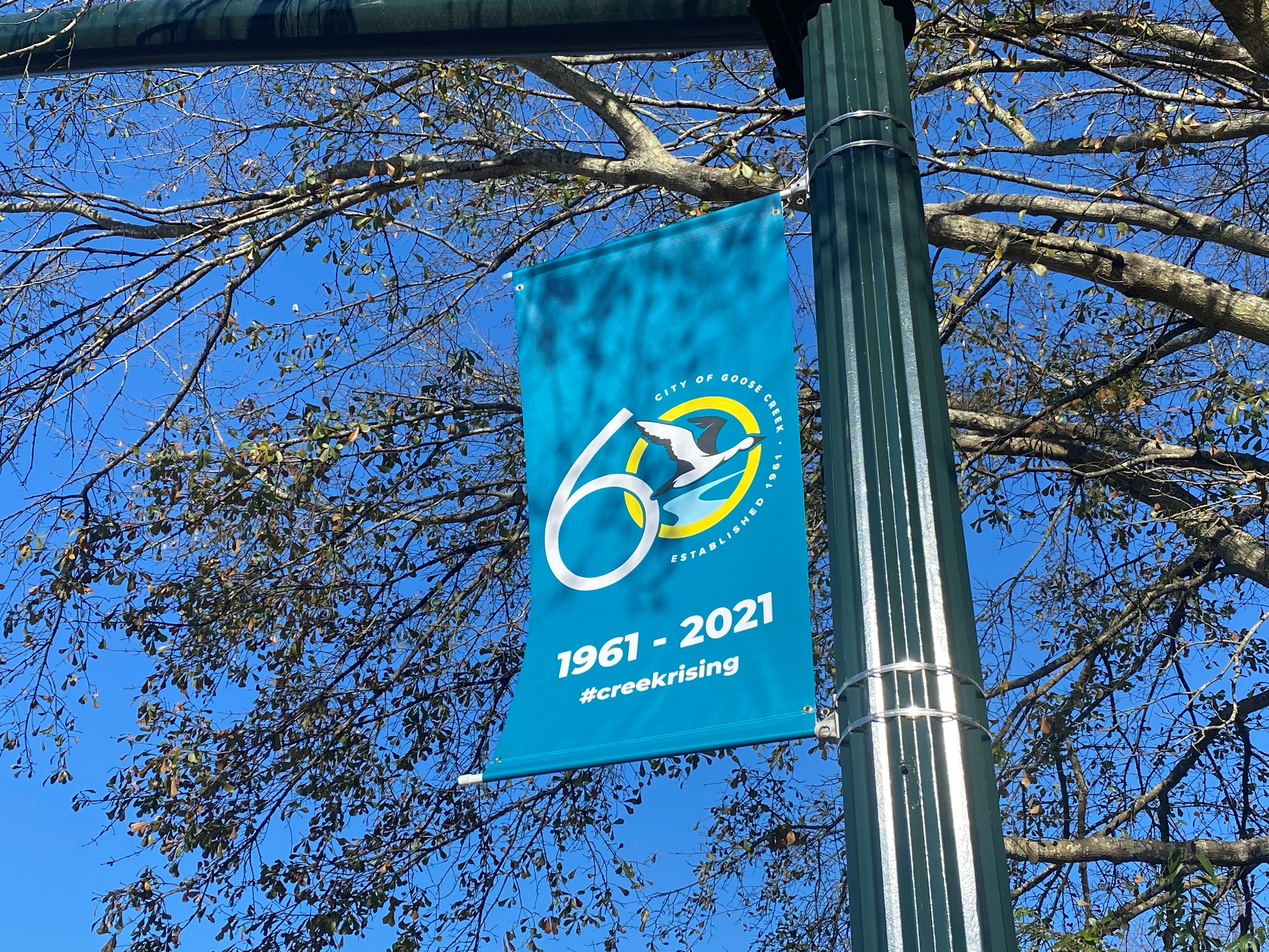 60th banner on St. James Avenue